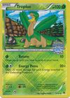 Tropius 5 101 Nationals Champion 14 League Promo
