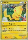 Pikachu World Collection Holo Promo French