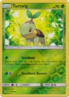 Turtwig 6 156 Common Reverse Holo